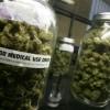 London Drugs, SDM weigh sale of medical marijuana