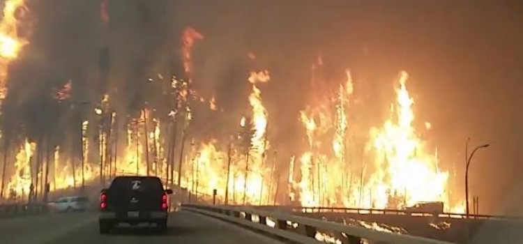 Loblaw, Shoppers Drug Mart aid wildfire relief efforts