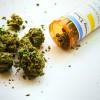 Shopping Drug Mart enlists medical cannabis supplier Aurora