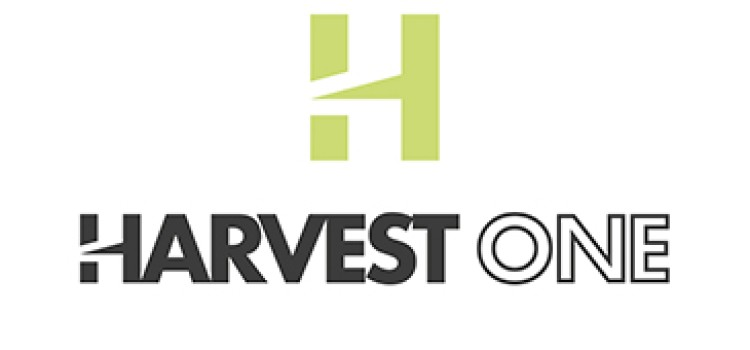 Harvest One names former Loblaw executive Froese as new CEO