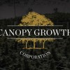 NHL Alumni Association teams up with Canopy Growth to research concussions and CBD