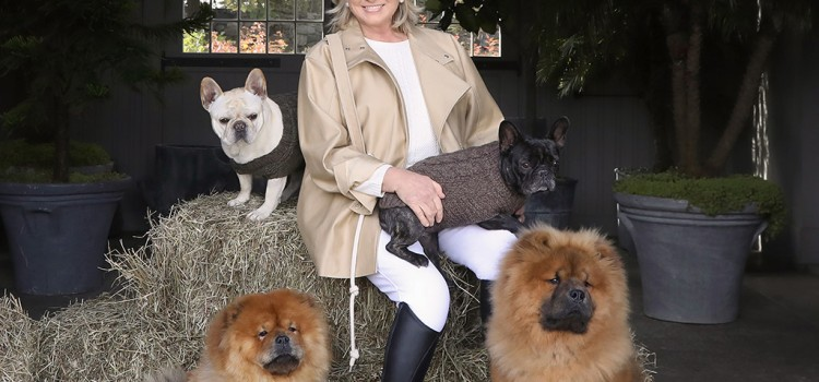 Canopy Animal Health, Martha Stewart and Marquee Brands launch new line of CBD products for pets